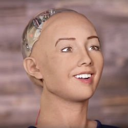 Realistic Robot Lady Cheerfully Agrees To Destroy Humans