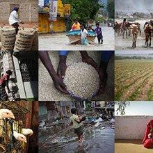 Thomson Reuters Foundation News | Lin Taylor Profile