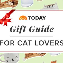 The 21 best gifts for cats and the people who love them