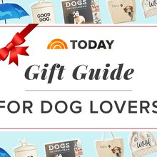 The 21 best holiday gifts for dogs and their human best friends