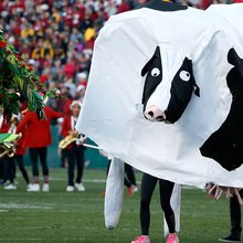 The story behind the Stanford band's 'cow' at the Rose Bowl   FOX Sports