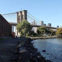 Weingarten: Venerable Brooklyn welcomes another wave