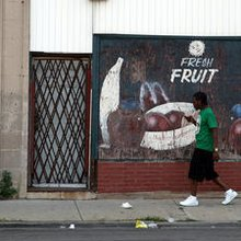 Aldermen say Emanuel needs to do more on food deserts
