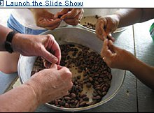 On the Chocolate Trail in Belize | Travel Deals, Travel Tips, Travel Advice, Vacation Ideas | Bud...