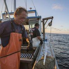 A Delmarva lobster tale