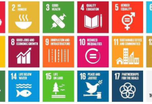 Understanding the Sustainable Development Goals: Five Key Questions - UN Tribune