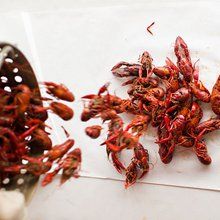 In Arkansas, Delta Crawfish Gives The Ozarks a Taste of Louisiana