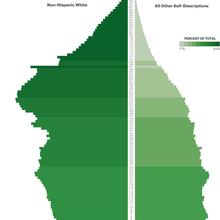 RollCall.com - The Emerging Diversity Generation