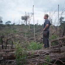 Conservationists v chainsaws: the RSPB's battle to save an Indonesian rainforest