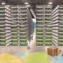 AeroFarms Raises $20 Million for High-Tech Urban Agriculture