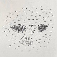 Pedigree Pigeons - The Rumpus.net