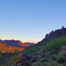 10 Reasons Why Snowbirds Need to Fly to Scottsdale, Arizona