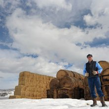 Saving the ranches: Routt County has been able to counter the fragmentation of agricultural land ...