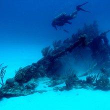 Bermuda, diving: An enchanted isle ringed by reefs, wrecks | Toronto Star