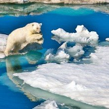 It's time to take the polar ice loss seriously