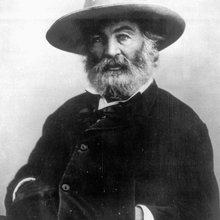 Was Walt Whitman 'gay'? New textbook rules spark LGBTQ history debate