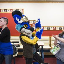 Furries seem to 'nest' in Pittsburgh year-round