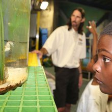 Son of a Saint youth go behind the scenes at aquarium