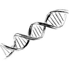 Expert Discusses Impressive Findings With Sacituzumab Govitecan in Metastatic TNBC