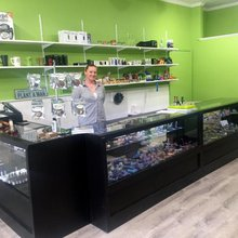 What would a cannabis store look like in Boothbay Harbor?: Part II