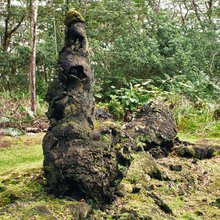 What are lava trees and how are they formed?