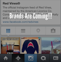 Four examples of brands rocking Instagram video