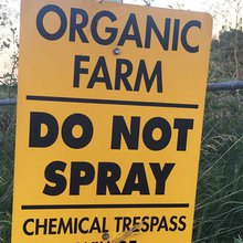 Missouri Organic Family Farm Faces Ruin After Herbicide Drift