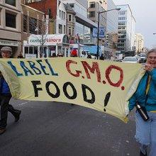 GMO Labeling: The Case for Civil Discourse