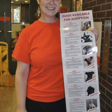 The right fit: Many pet shelters choose more 'open' adoption