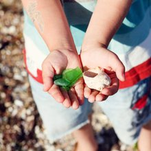 Your Kid's Beach Questions Answered