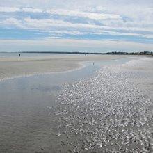 Explore Beautiful Beaches and More in Hull, Massachusetts
