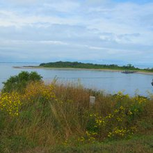 How to Explore the Boston Harbor Islands on a trip to Boston, MA