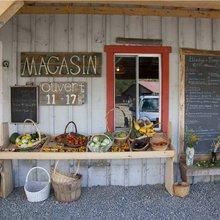 Montreal Diary: Organic farm serves up free-range philosophy