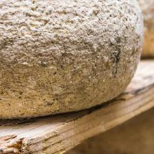 The FDA Is Coming for Your Cheese