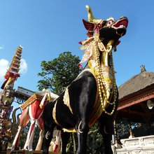 A Royal Cremation in Ubud