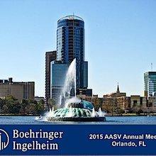 2015 Boehringer Ingelheim AASV Pre-Conference Seminar | SwineCast