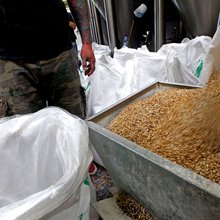 Craft Beers Grow in Scotland