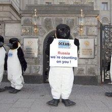 Krill Super-Trawlers Pushing Penguins Toward Extinction