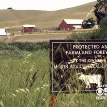 Marin Land Trust Saves Family Farms And Rural Life From Developers' Pressure