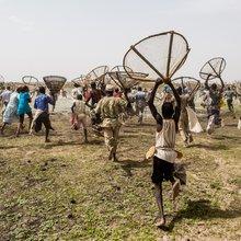 Machetes and Motorbikes at Mali's Sangue-Mo Fishing Festival