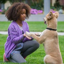Why a Black 'Annie' Is So Significant
