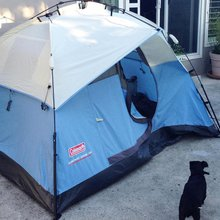 Stay in this Silicon Valley tent for $900 a month