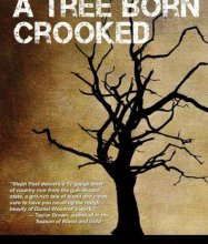 The Twisting Branches of Florida Noir: A Review of a Tree Born Crooked by Steph Post