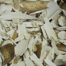 How to Save Elephants: Obliterate Ivory Stockpiles Simultaneously