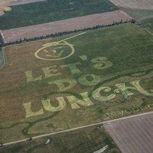 Crop circles in Kansas: John Codling's art for aliens - Vocativ