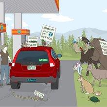 Everyday Environmentalists