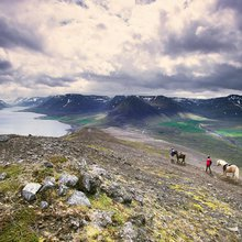 Why the Best Way to See Iceland Is By Horse