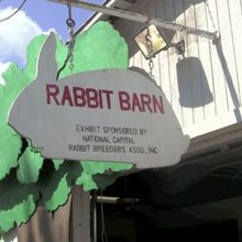 VIDEO: 4-H Rabbit Club Hops to the County Fair