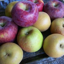 A Breakdown of Apples You've Probably Never Heard Of