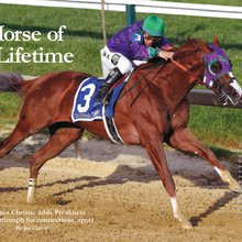 Mid-Atlantic Thoroughbred - Horse of a Lifetime